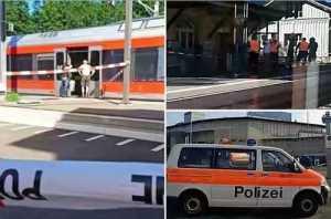 Breaking! Armed Man Stabs 6, Sets Train On Fire In Switzerland